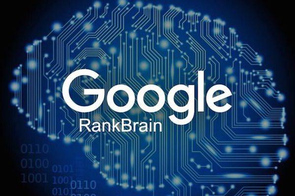 Rankbrain e Bert, il nuovo algoritmo di Google , per il posizionamento siti web