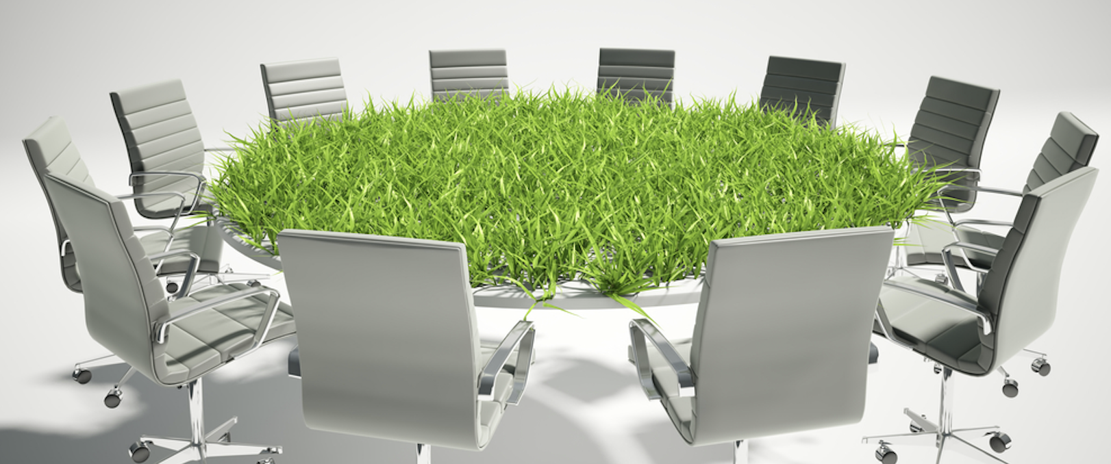 Scopri come comunicare una green company attraverso il green marketing