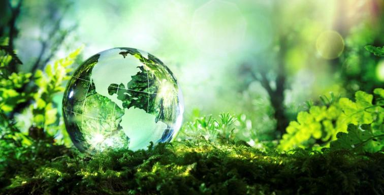 marketing ambientale e comunicazione green