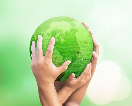 comunicare la sostenibilità delle aziende green