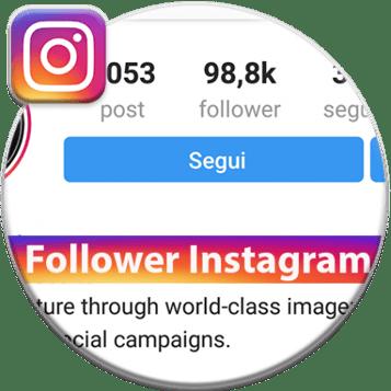 follower-instagram